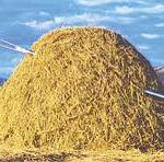 haystack image 1